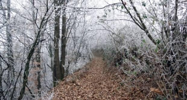 Danas hladno i maglovito vrijeme