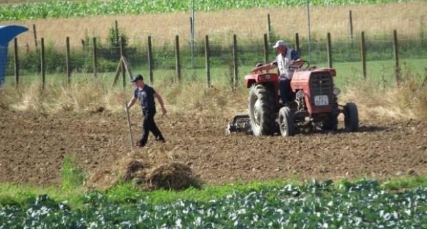Predsjetvena priprema tla i sjetva kukuruza