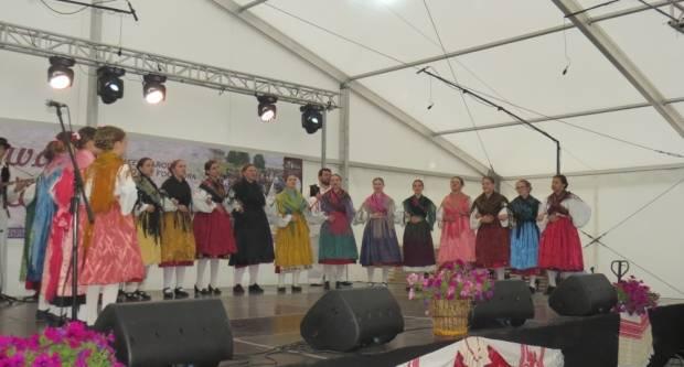 29. smotra folklora u Velikoj okupila brojne goste iz Rumunjske, Mađarske, BiH i Vojvodine (FOTO)