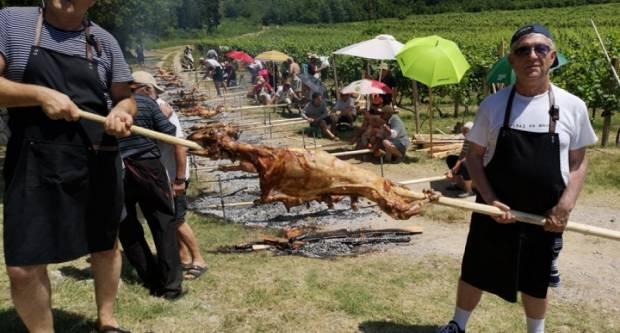 Kronika na Novi Lamb Day – Kup Hrvatske u pečenju janjaca ručnim načinom za novinare