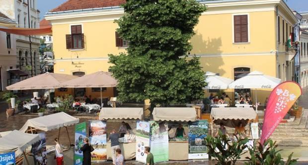 Prezentacija Slavonije u Pečuhu