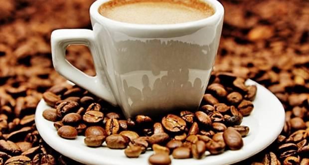 Kako izgleda put kave od plantaže do omiljene šalice