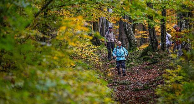Parku prirode Papuk odobren projekt vrijednosti veće od 700.000,00 kuna