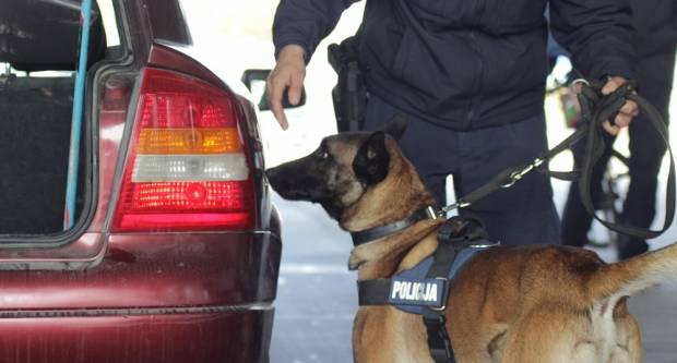 Policijski pas ʺJackʺ ponovno uspješan u pronalasku droge na graničnom prijelazu