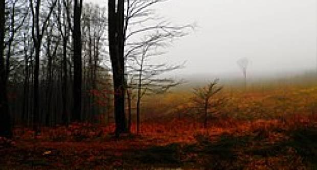U nizinama unutrašnjosti u prvome dijelu dana mjestimice magla