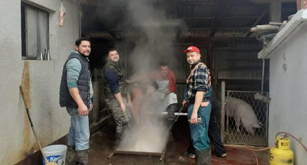 Priča o propasti Slavonije: Kad zadnje svinje utihnu