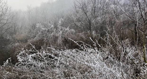 Siječanj nam je dosad podario puno sunčanih dana, ali pred nama su hladni dani i moguće snježne pahulje