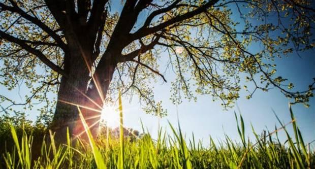 Danas uživajte u pravom proljetnom danu, temeperatura do 24°C