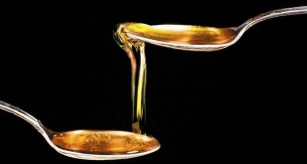 Hibernacijska dijeta: Je li moguće s medom doći do gubitka kilograma?