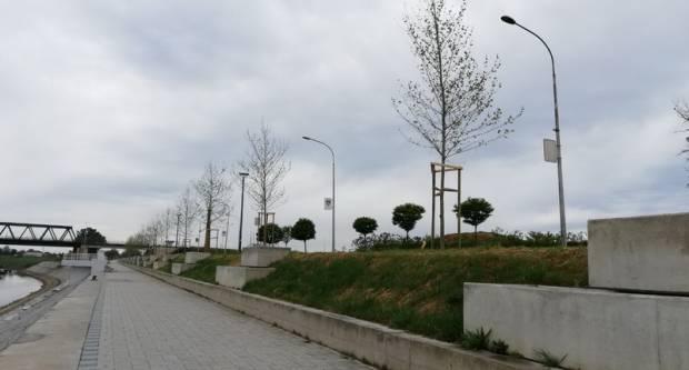Ulice grada dobile nova stabla