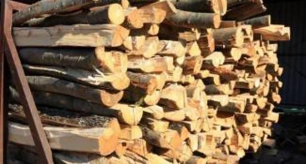 Posjekao, izrezao, te odvezao veću količinu stabala s Migalovaca
