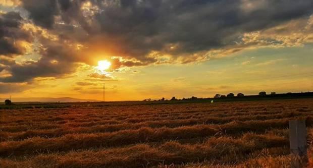 FOTKA DANA: U polju kod Jakšića