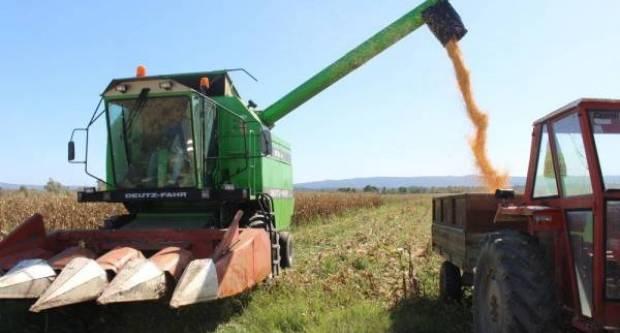Bliži se berba kukuruza evo kako pripremiti heder za kombajniranje kukuruza