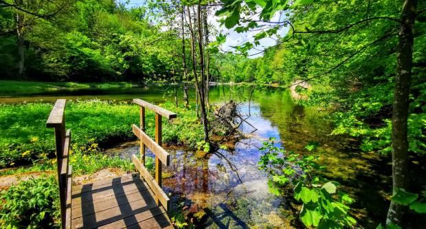 ʺTjedan odmora vrijedanʺ po jeftinijim cijenama u Parku prirode Papuk